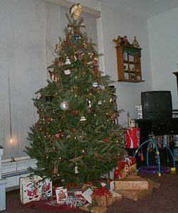 Christmas Tree 2003