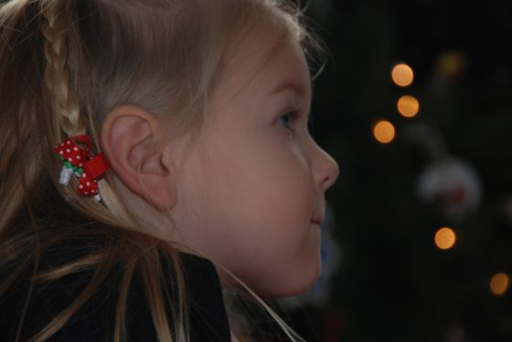 Christmas 2010 Lights