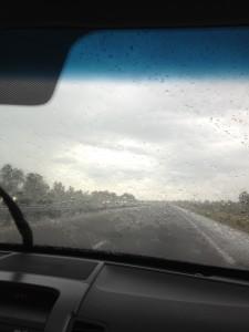 Florida Bugs are no Match for Florida Rain