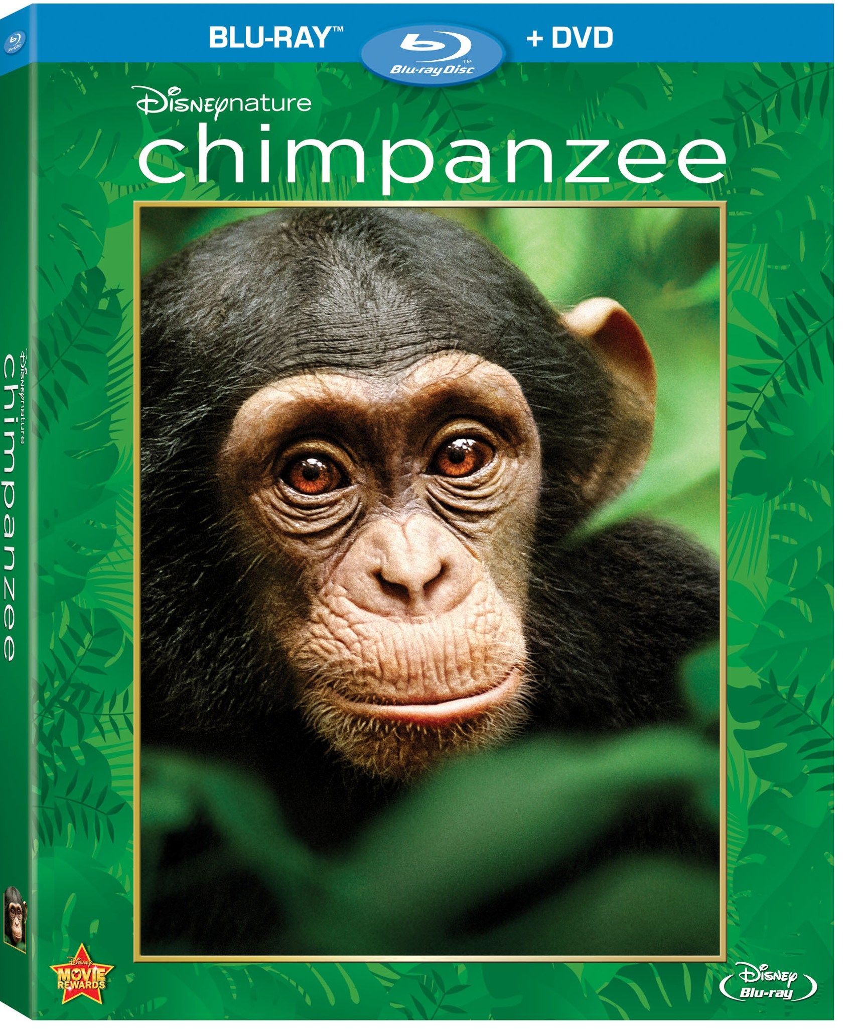 Disney Nature Chimpanzee Bluray