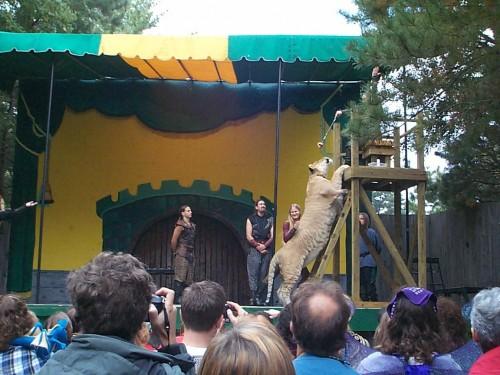 King Richard's Faire 2003