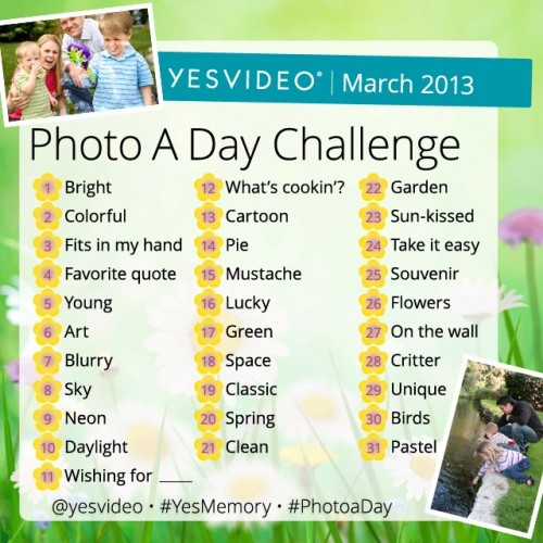 YesVideo PhotoADay Challenge for March