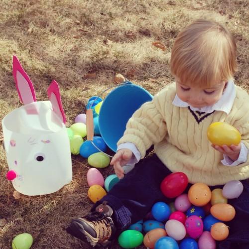 Andrew Hoarding Eggs