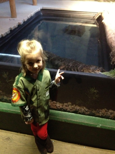 The Alligator at Capron Park Zoo