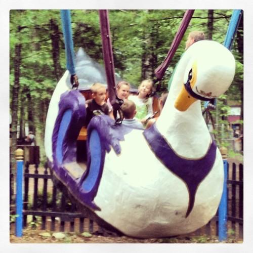 Swan Swing