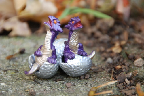 Dragon Hatchlings