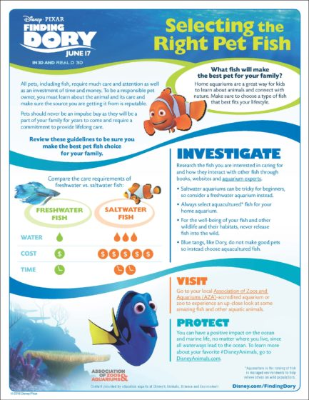 Finding Dory Pet Fish