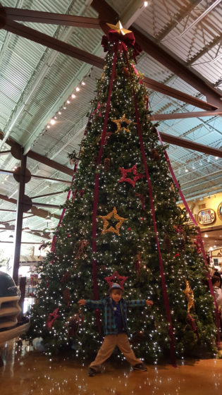Bass Pro Christmas Tree