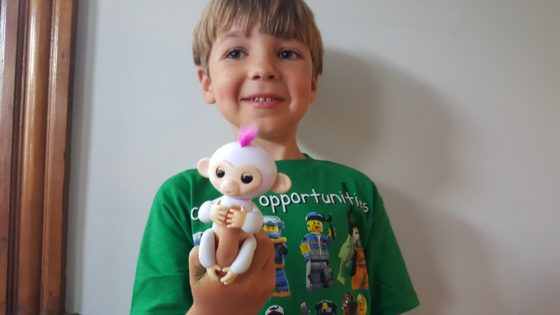 Andrew with Sophie his Fingerlings Robotic Interactive Monkey