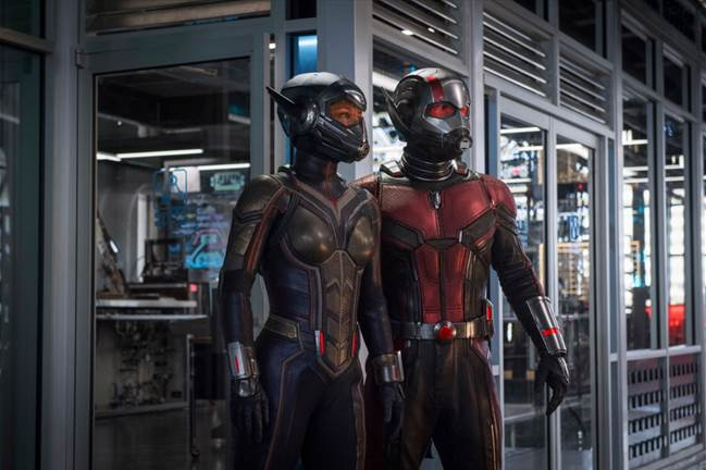 The Wasp and Ant-Man Costumes