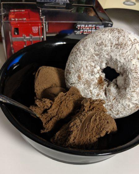 Chocolate Ice Cream and Powdered Donut